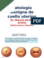 Patologia Benigna de Cervix - Ginecologia