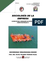 GUÍA DE SOCIOLOGÍA DE LA EMPRESA (SILVIA)
