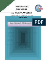 Modelo de Informe 2016