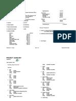 Project Summary.doc