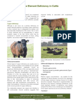 Trace Element Deficiency in Cattle