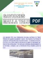 Clase 7 Gaviones