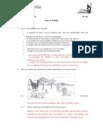 Ficha de trabalho Ecossistemas.docx