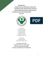demam berdarah project internsip 2014-2015