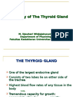 Hillson Thyroid Disorders | Thyroid Stimulating Hormone | Thyroid