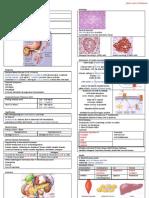 Pathology of Diabetes