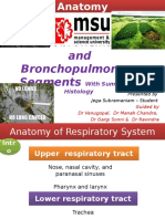 tracheobronchialepulmonary