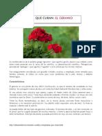el_geranio__1_.pdf