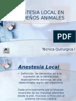 Anestesia Local en Pequeños Animales