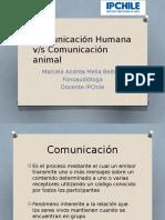 Comunicación Humana y Animal