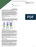 1. Pediatric Imperforate Hymen_ Background, Anatomy, Pathophysiology