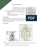 420-2014-03!20!25 Fisiopatologia Del Sistema Linfatico