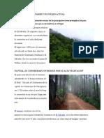 Bosques de El Salvador y Su Estado Actual