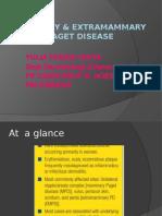 kuliah Mammary & Extramammary Paget Disease jurusan pendidikan dokter umum fakultas kedokteran