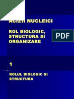 ADN Rol Structura Organizare