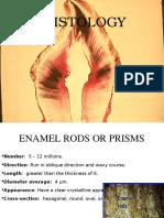 Enamel Histology