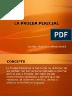 tema-3-prueba-pericial-1216496036717150-9
