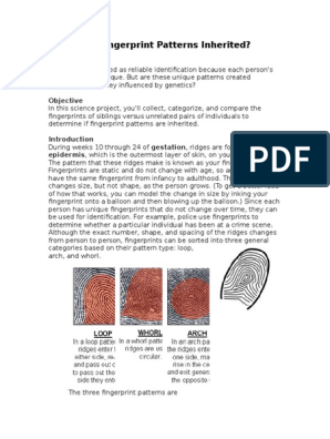 are fingerprint patterns inherited research paper