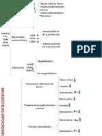 Cuadro Sinoptico de Los Datos de La Bh en Diferentes Anemias