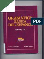 Gramatica Basica Capitolo 1