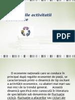 Fluctuatiile-activitatii-economice