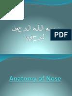 Anatomy of Nose