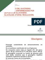 6 Glucógeno-glucólisis (1)