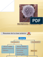 Membrana plasmatica 2015
