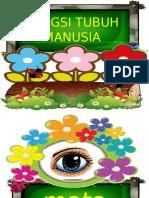 FUNGSI TUBUH MANUSIA