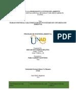 Caracterizacion de un escenario de contaminacion corregido.docx