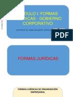 Modulo i Diapos Gobierno Corporativo