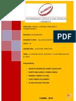 IF_AUDITORIA-TRIBUTARIA_GRUPAL.pdf