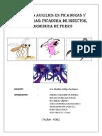 Monografia Primeros Auxilios en Picaduras y Mordeduras Picadura de Insectos Mordedura de Perro