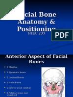 Facial Bone Anatomy & Positioning