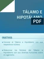 Hipotálamo y Tálamo