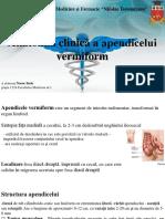 Anatomia Clinică a Apendicelui 2015