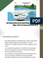 Metabolismo de Ecosistemas Acuaticos