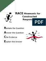 race graphic organizer