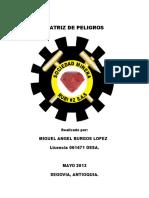 Presentacion Matriz de Peligros RUBI # 2