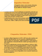 citogenetica molecular.ppt