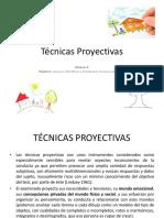 Modulo 8 Tecnicas Proyectivas Procesos Socioafectivos