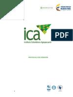 Protocolos de Atencion Ica