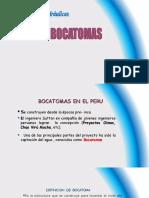 170357829-Clase-1a-Bocatomas.ppt