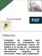 Sistemacardiovascular A