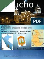 exposicionleo-150901120608-lva1-app6891