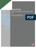 Reporting Document-sap bpc epm