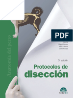 Gil, Gimeno, Laborda & Nuviala, Protocolos de Diseccion 1997