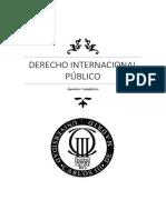 Apuntes Derecho Internacional UC3M