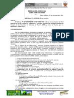 RESOLUCION APROBAR FORMATO DE PIT.docx