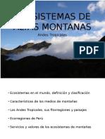 Ecosistmas de Altas Montañas_v2